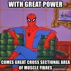 spider manf - With Great Power Comes great cross sectional area of muscle fibres