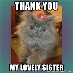 cute cat - Thank you My lovely sister