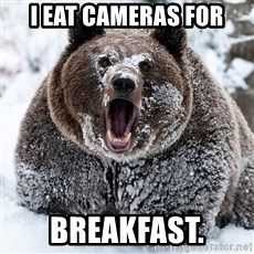 Cocaine Bear - I eat cameras for breakfast.