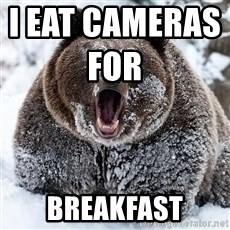 Cocaine Bear - I eat cameras for                      breakfast