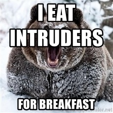 Cocaine Bear - I eat intruders                         for breakfast