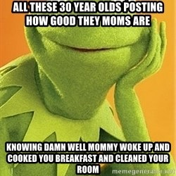 Kermit the frog - All these 30 year olds posting how good they moms are  knowing damn well mommy woke up and cooked you breakfast and cleaned your room
