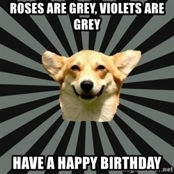 Color Blind Dog - Roses are grey, violets are grey have a happy birthday