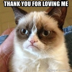 Grumpy Cat  - Thank you for loving me