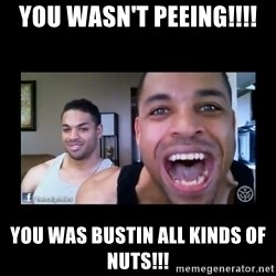 The Hodgetwins - You wasn't peeing!!!! You was BUSTIN ALL KINDS OF NUTS!!!