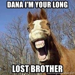 Horse - Dana I'm your long  lost brother