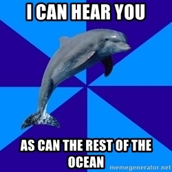 Drama Dolphin - I can hear you As can the rest of the ocean