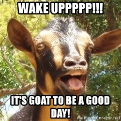 Illogical Goat - wake uppppp!!! it's goat to be a good day!
