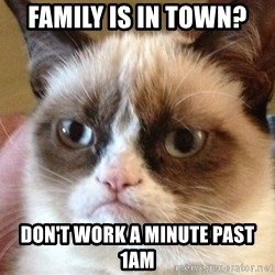 Angry Cat Meme - Family is in town? Don't work a minute past 1am