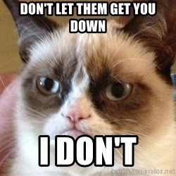 Angry Cat Meme - Don't let them get you down I don't