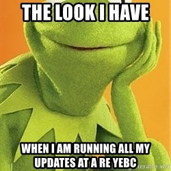 Kermit the frog - The look I have  When I am running all my updates at A Re Yebc