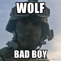 Aghast Soldier Guy - WOLF BAD BOY