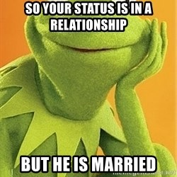 Kermit the frog - So your status is in a relationship  But he is Married
