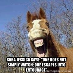 "Horse -  Sara Jessica says: ""one does not simply watch; one escapes into Entourage"""