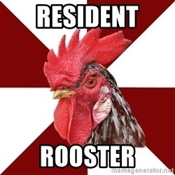 Roleplaying Rooster - Resident  Rooster