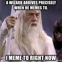 White Gandalf - A wizard arrives precisely when he memes to. I meme to right now