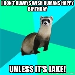 Obvious Question Ferret - I don't always wish humans happy birthday unless it's Jake!