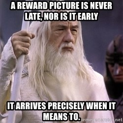 White Gandalf - A reward picture is never late, nor is it early It arrives precisely when it means to.