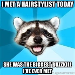 Lame Pun Coon - I met a hairstylist today She was the biggest buzzkill I've ever met