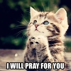 good luck cat -  i will pray for you