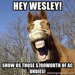 Horse - hey wesley!  show us those $700worth of AC undies!