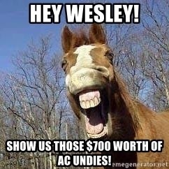 Horse - hey wesley! show us those $700 worth of AC undies!
