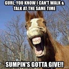 Horse - GURL, YOU KNOW I CAN'T WALK & TALK AT THE SAME TIME SUMPIN'S GOTTA GIVE!!