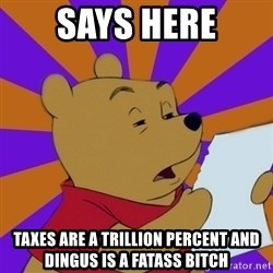 Skeptical Pooh - SAYS HERE TAXES ARE A TRILLION PERCENT AND DINGUS IS A FATASS BITCH