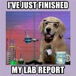 Dog Scientist - I've just finished My lab report