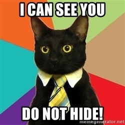 BusinessCat - I can see you Do Not hide!