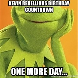 Kermit the frog - Kevin Rebellious birthday countdown One more day...
