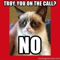 No cat - Troy, you on the call? NO