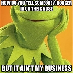 Kermit the frog - How do you tell someone a booger is on their nose But it ain't my business