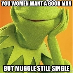 Kermit the frog - You Women Want A Good Man But Muggle Still Single
