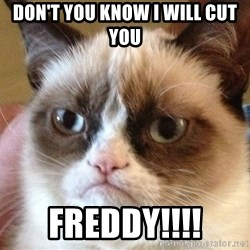 Angry Cat Meme - Don't you know I will cut you FREDDY!!!!