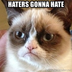 Angry Cat Meme - Haters gonna hate