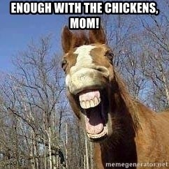 Horse - Enough with the chickens, mom!