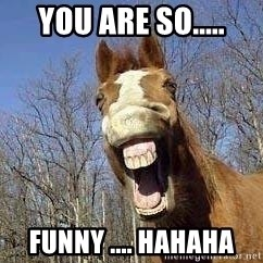 Horse - you are so..... funny .... hahaha
