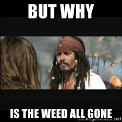 But why is the rum gone - But why is the weed all gone