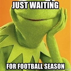 Kermit the frog - Just waiting for football season