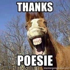 Horse - THANKS poesie