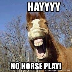 Horse -         HAYYYY No horse play!