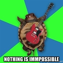 Aspiring Musician Turtle -  nothing is immpossible