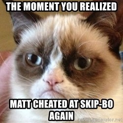Angry Cat Meme - THe MOMENT YOU REALIZED matt cheated at skip-bo again