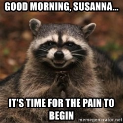 evil raccoon - Good Morning, Susanna... It's time for the pain to begin