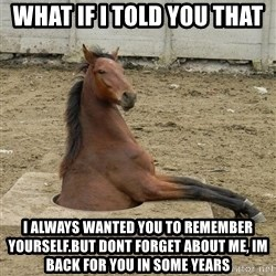 Hole Horse - what if i told you that I always wanted you to remember yourself.But dont forget about me, im back for you in some years