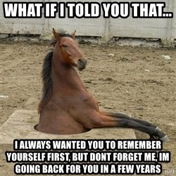 Hole Horse - What if I told you that... i always wanted you to remember yourself first, but dont forget me, im going back for you in a few years