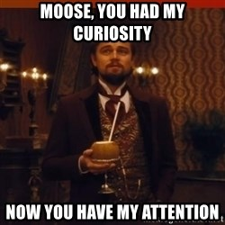 you had my curiosity dicaprio - Moose, you had my curiosity Now you have my attention
