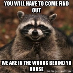 evil raccoon - you will have to come find out we are in the woods behind yr house