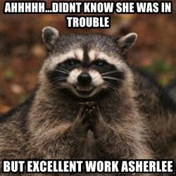 evil raccoon - ahhhhh...didnt know she was in trouble But excellent work ASHERLEE